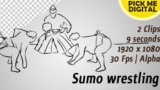 Cover Image for Sumo wrestling
