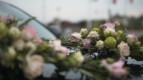 Thumbnail for Car Decorated with Flowers