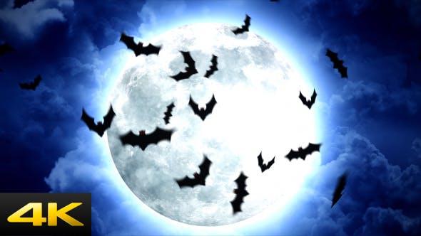 Thumbnail for Halloween Moon and Bats