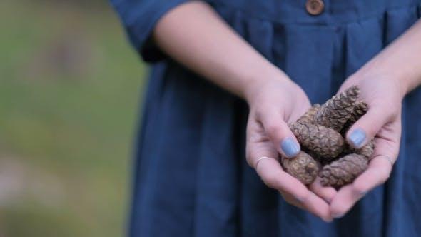 Thumbnail for Tannenzapfen in den Händen eines Mädchens in einem blauen langen Kleid