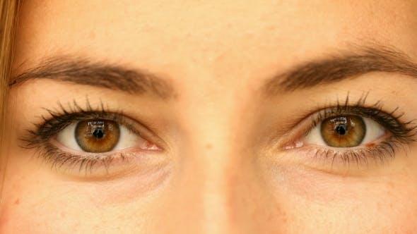 Thumbnail for Brown Eyed Girl