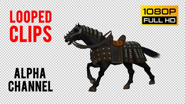 Thumbnail for Horse Looped 7