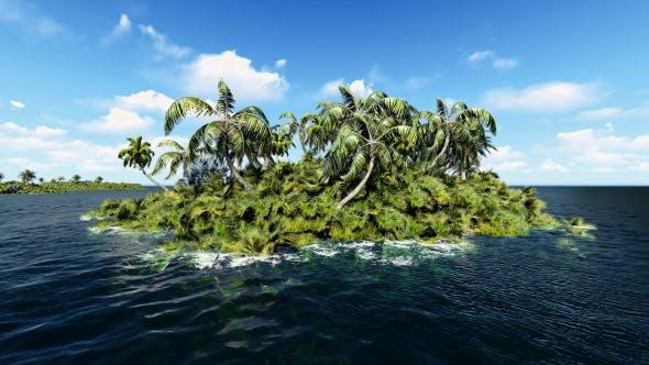 Thumbnail for Tropical Palm Island