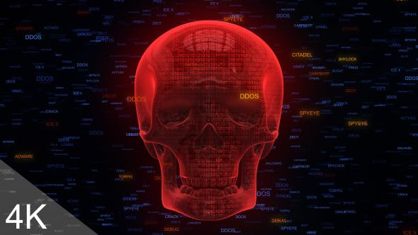 Thumbnail for Unprotected Internet Security Red Skull Malware