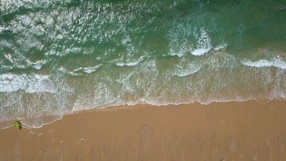 Thumbnail for Tropical Shoreline in Sunlight