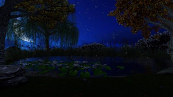 Thumbnail for Beautiful Fabulous Lake at Night