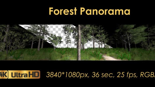 Thumbnail for Forest 3D Panoramic Animation
