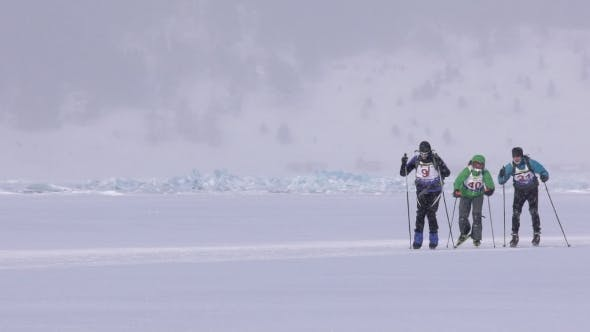Thumbnail for Group of Three Skiers and Cyclists Racing on Skis on the Ice.