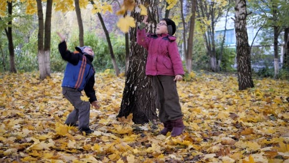 Thumbnail for The Time of Year, Autumn. Children Playing in the Nature