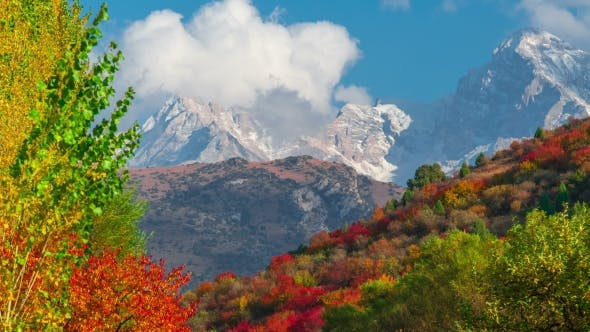 Cover Image for The Mountain  Autumn Landscape with Colorful Forest