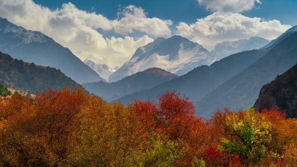 Thumbnail for of Colorful Autumn Landscape in the Mountains with Forest.