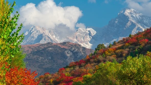 Thumbnail for of the Mountain Autumn Landscape with Colorful Forest and High Peaks