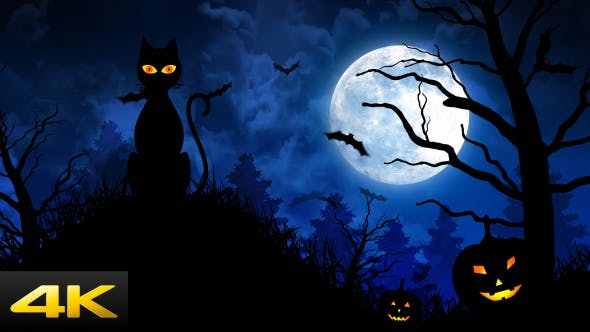 Thumbnail for Halloween Scary Cat