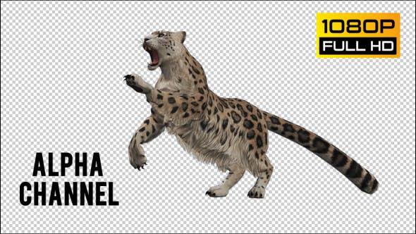 Thumbnail for Leopard 2