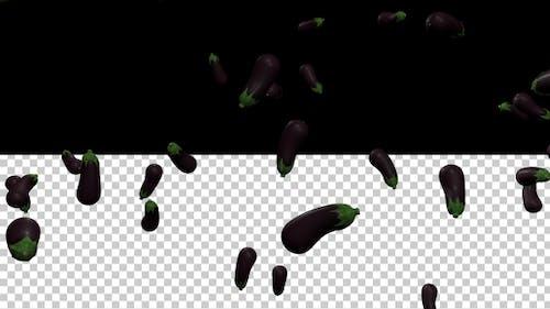 Aubergine - Eggplant