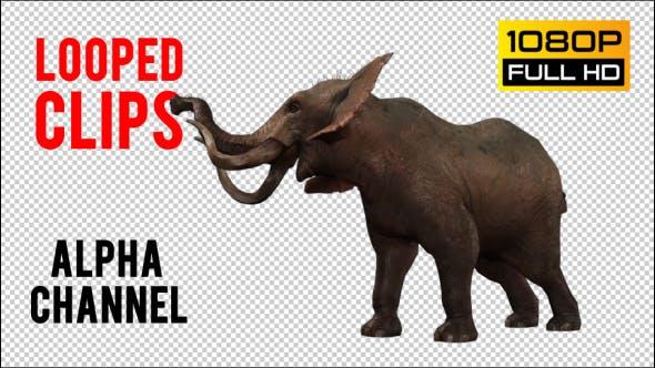 Thumbnail for Elephant 2