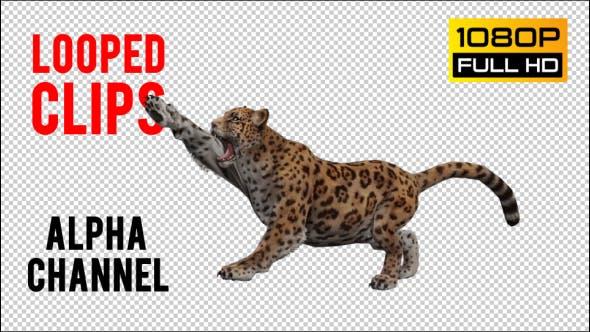 Thumbnail for Jaguar 2