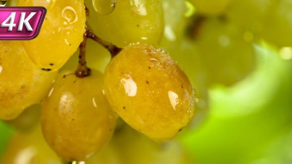 Thumbnail for Amber Berry Grapes