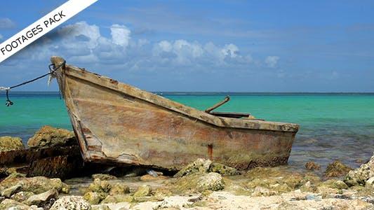 Thumbnail for Caribbean Pack 01