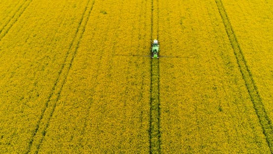 Thumbnail for Tractor Spraying Oilseed Rape Field. Agriculture Background. Aerial View.