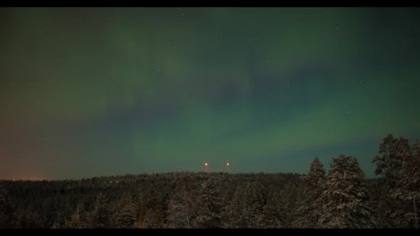 Thumbnail for Northern Lights Over the Woods
