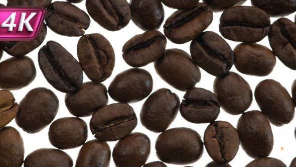 Thumbnail for Freshly Roasted Coffee Grains