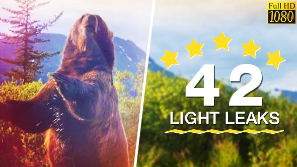 Thumbnail for 42 Light Leaks