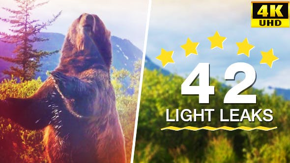 Thumbnail for 42 Light Leaks (4K)