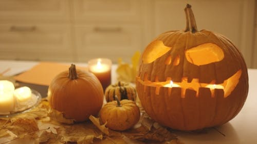 Jack-o-lantern and Pumpkins