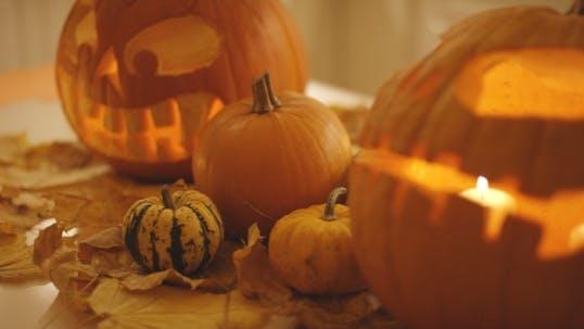 Thumbnail for Pumpkins Near Jack-o-lanterns