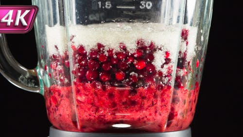 Berries Cowberry and Blender