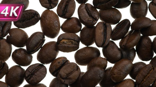 Thumbnail for Fried Coffee Grains on White