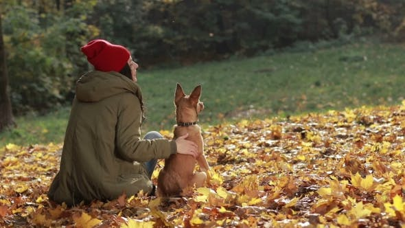 Thumbnail for Charming Woman and Her Dog Posing in Autumn Park