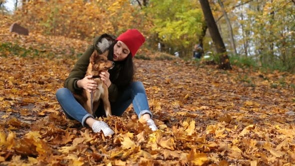 Thumbnail for Beautiful Girl Stroking Cute Dog in Autumn Park