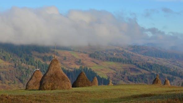 Amazing Rural Scene on Autumn Valley.