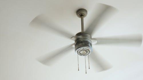 Ceiling Fan Rotating