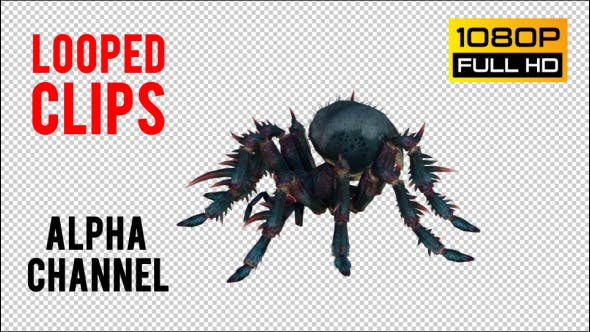 Spider 1 Realistic Pack 2