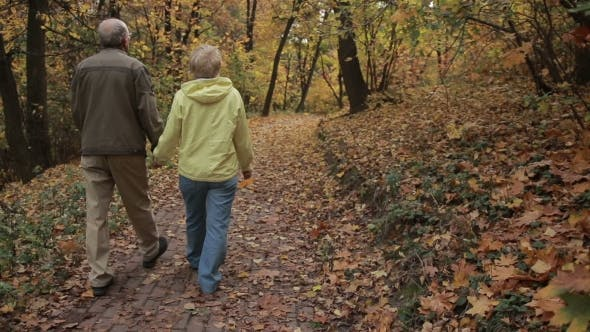 Thumbnail for Senior Couple Enjoys Romantic Walk in Autumn Park