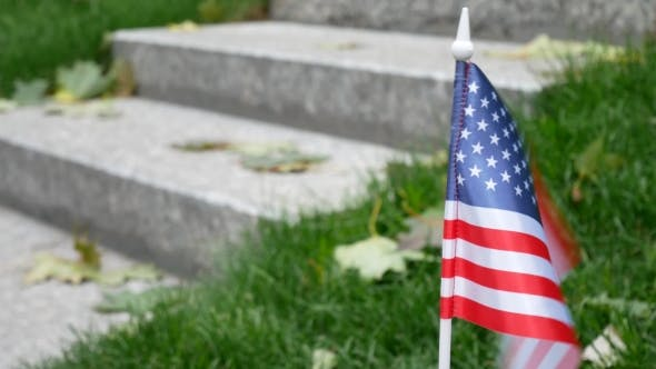 Thumbnail for Man And American USA Flag on Veterans Day 11Th November in America