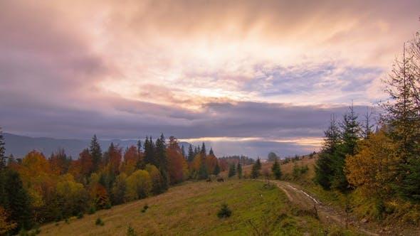 Thumbnail for Herbst. Sonnenaufgang in den Bergen