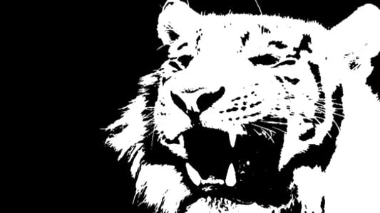 Thumbnail for White Tiger