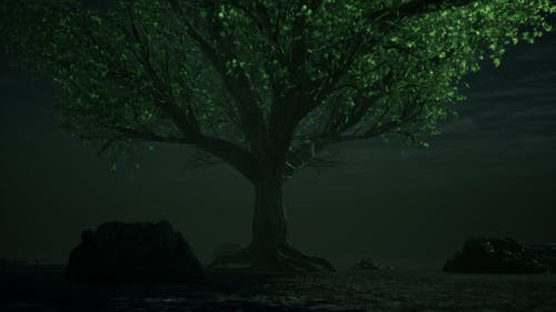 Fantasy Tree Underwater