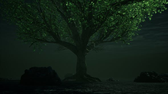 Thumbnail for Fantasy Tree Underwater