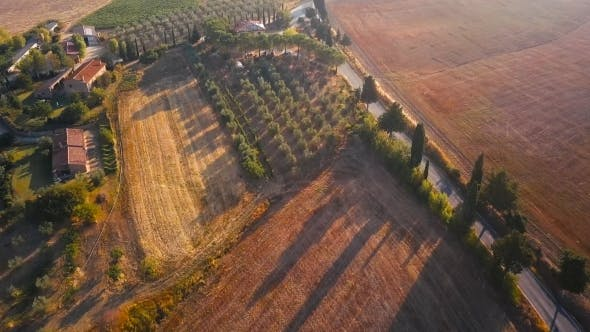 Thumbnail for Houses of Val d'Orcia