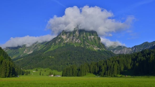 Thumbnail for Amazing  on the Fantastic Swiss Meadow