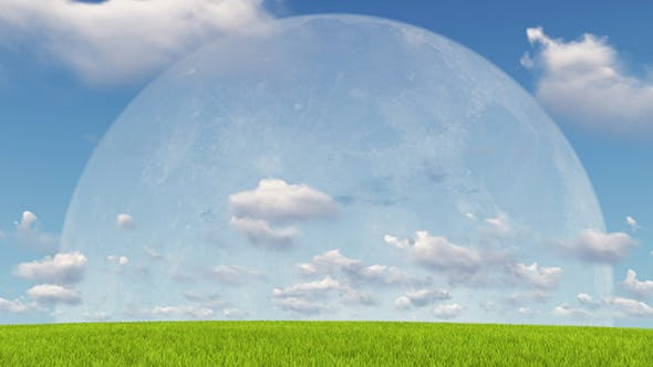 Moon and Meadow