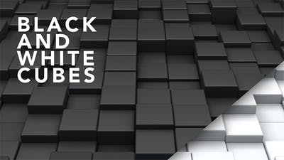 Black and White Cubes