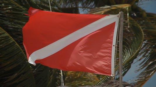Thumbnail for Warning flag flying Full HD