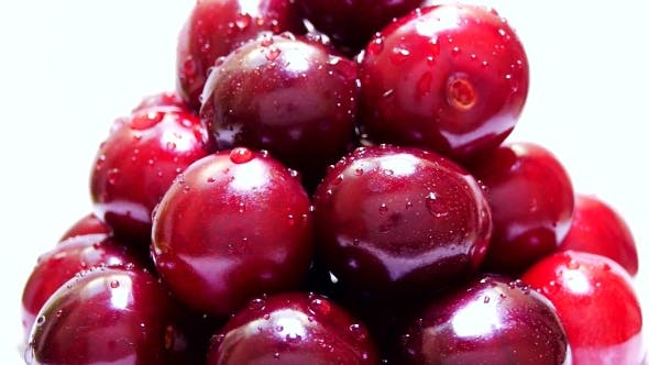 Thumbnail for Bunch of Red Cherries with Water Drops