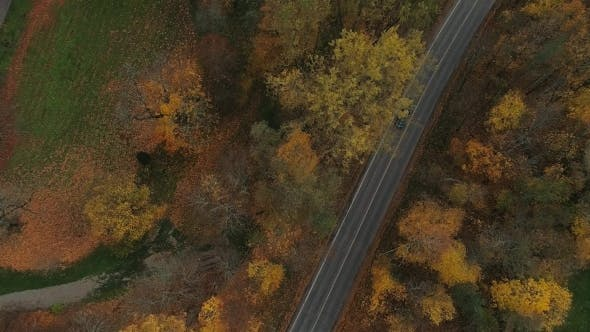 Sigulda City Autumn Road Car Drive From Above